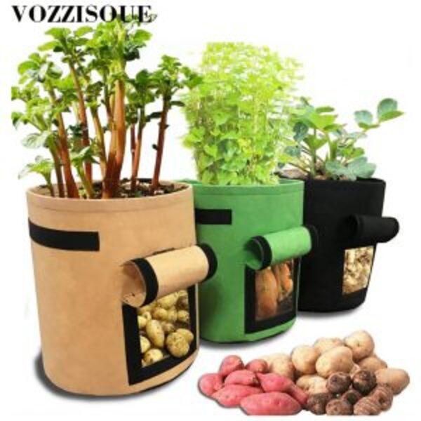 עציץ לגידול ירקות ביתי