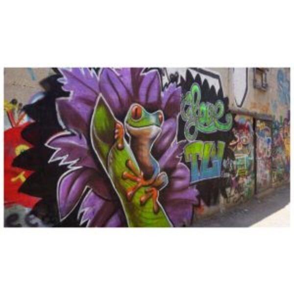 גרפיטיקידס: סיור אמנות רחוב ויצירה לילדים