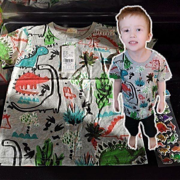 מגוון חולצות טישרט דינוזאור במידות 2-7 שנים